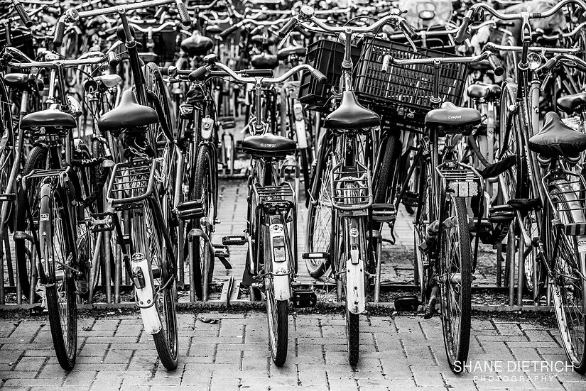 Bicycle No. 14 - Parked
