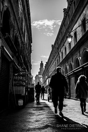 Venice - Morning Alive
