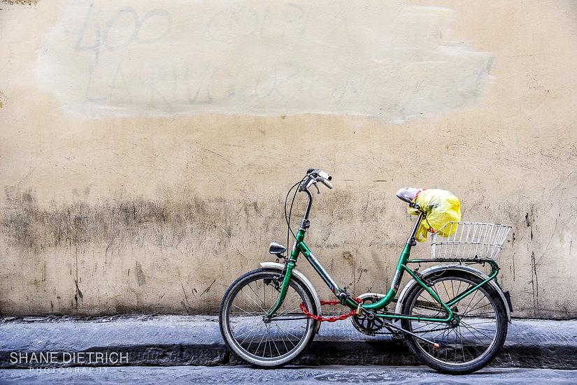 Bicycle No. 3 - Green Bike Red Chain