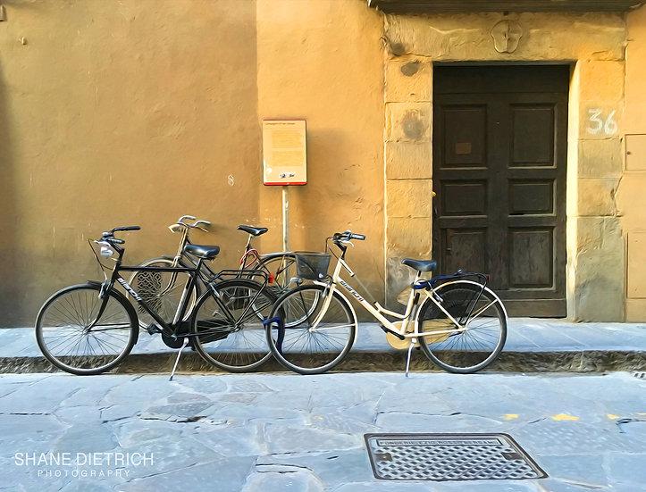 Bicycle No. 7 - Black & White