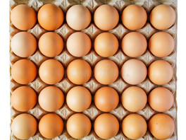 A Truckload of Eggs