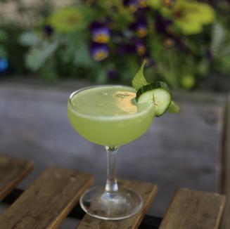 Cocktial 1.jpg