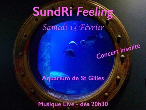 Aquarium de St Gilles