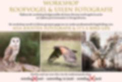 flyer-roofvogel-workshop3.jpg