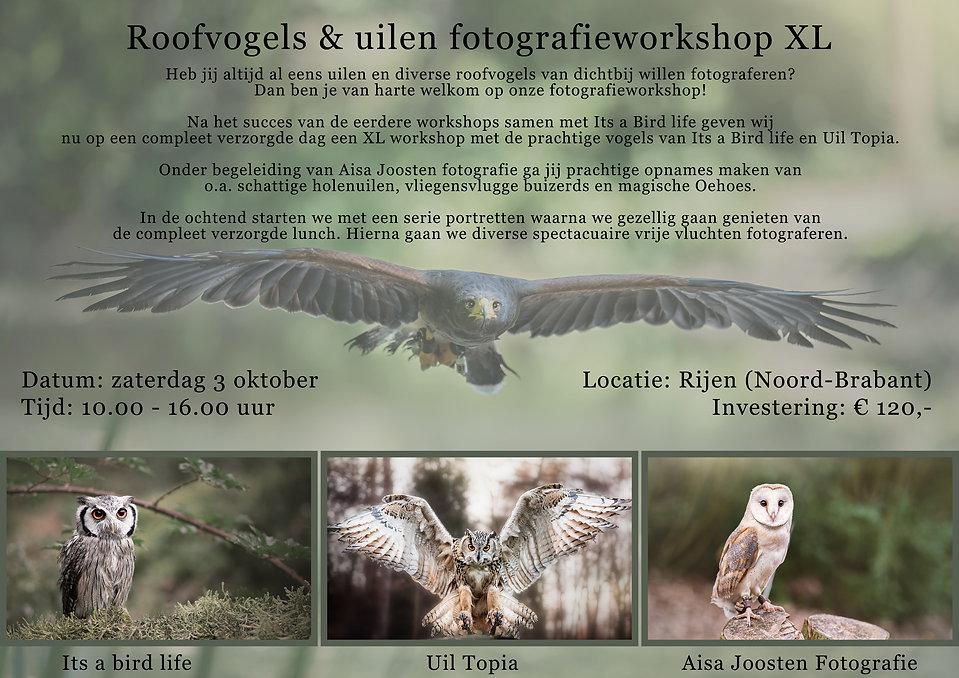 Flyer-XL-roofvogel-workshop.jpg
