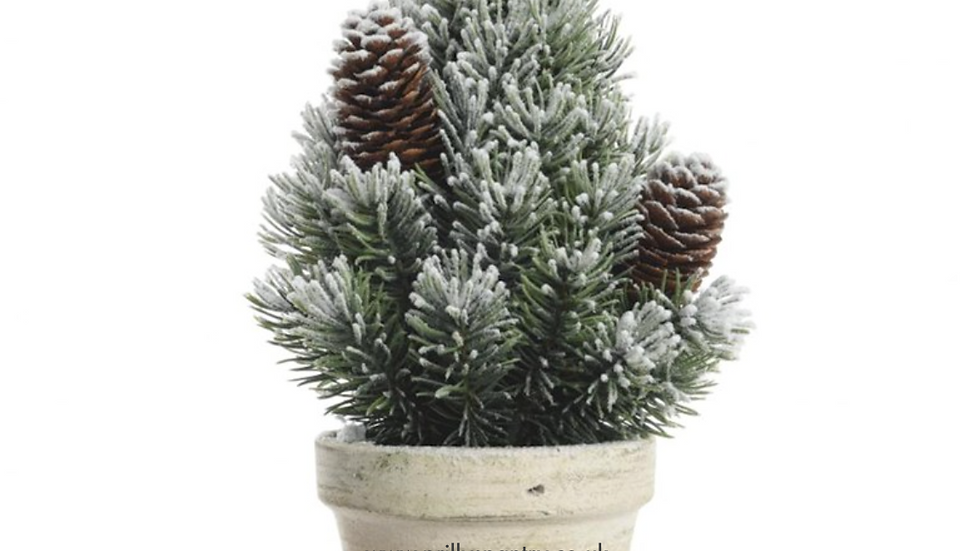 Table Top Snowy Bushy Mini Pine Christmas Tree In Grey Pot - 24cm