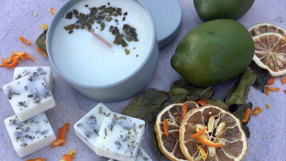 Citrus Grove - Eco Wax Melts - 12 Pack (48hrs)