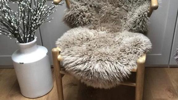 Vole - M/L Curly Coat Sheepskin Rug - (70cm x 90-100cm)