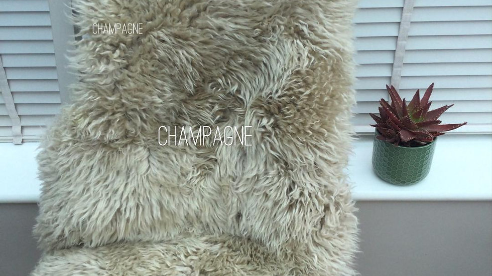 Curly Sheepskin - Single Pelt - Deep Pile Champagne