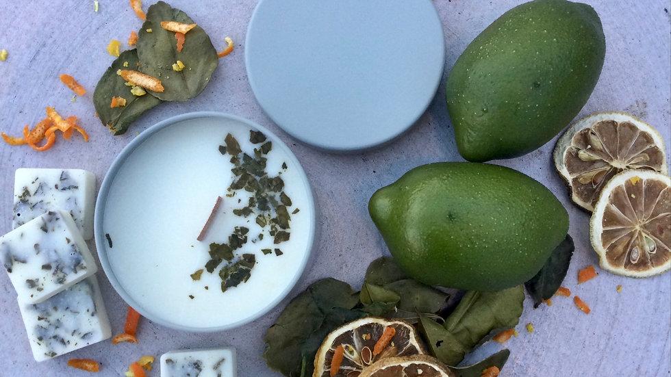 Citrus Grove - Eco Tin Candle