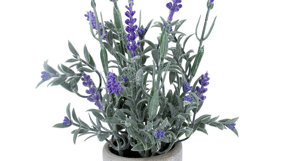 Faux Potted Lander Plant - Grey Stone Pot