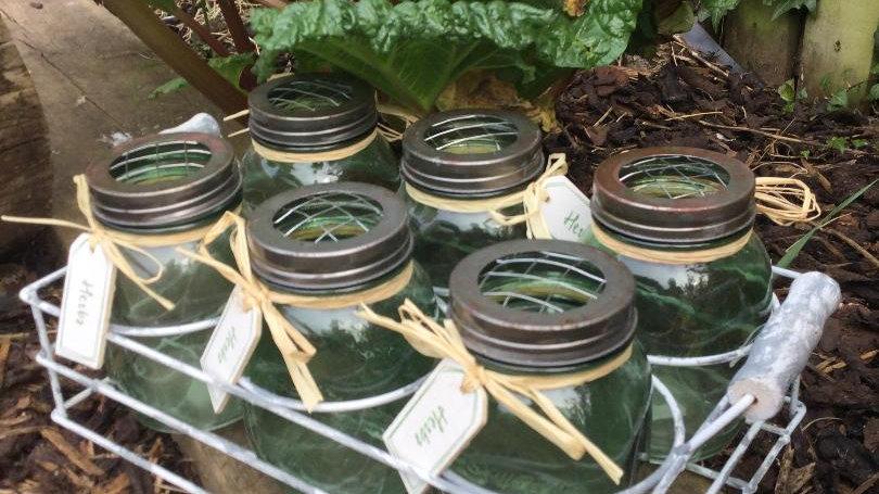 6 Green Glass Herb Garden Jar Set In Metal Tray