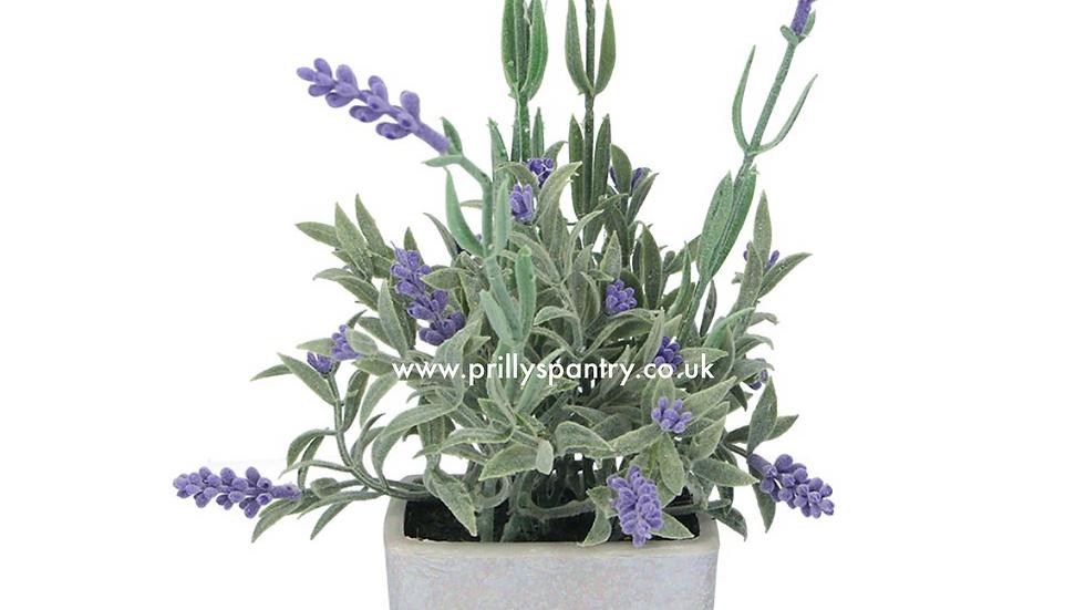 Gisela Graham Artificial Potted lavender Plant - 19cm