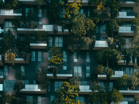 A brief introduction to social value in real estate