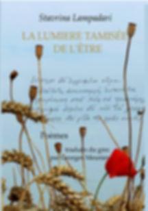 Stavrina lampadari Georges Meunier , La lumière tamisée de l'être