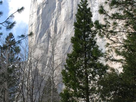"""No Way Down But Up"":  3 Lessons from Alex Honnold's Climb of El Capitan"