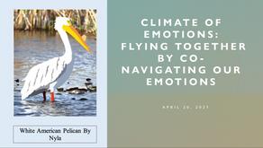 New Save Our Seabirds Project Advances Environmental Behavior Change