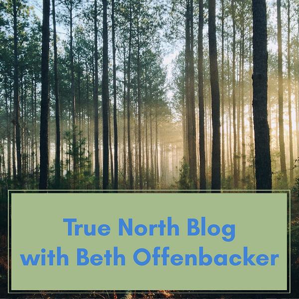 True-North-Blog.png