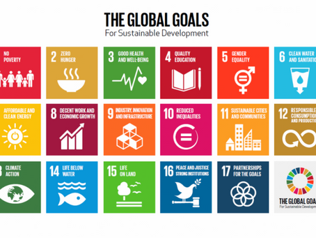 Replicating & Scaling Up: UN Database of Voluntary Good Practices and Implementation of the SDGs