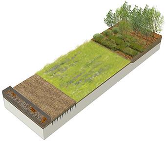 Biodiversité compost potager