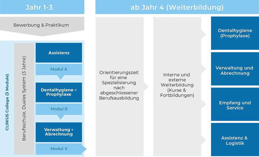 Infografiken_Clinius_Ausbildung_ZFA.jpg