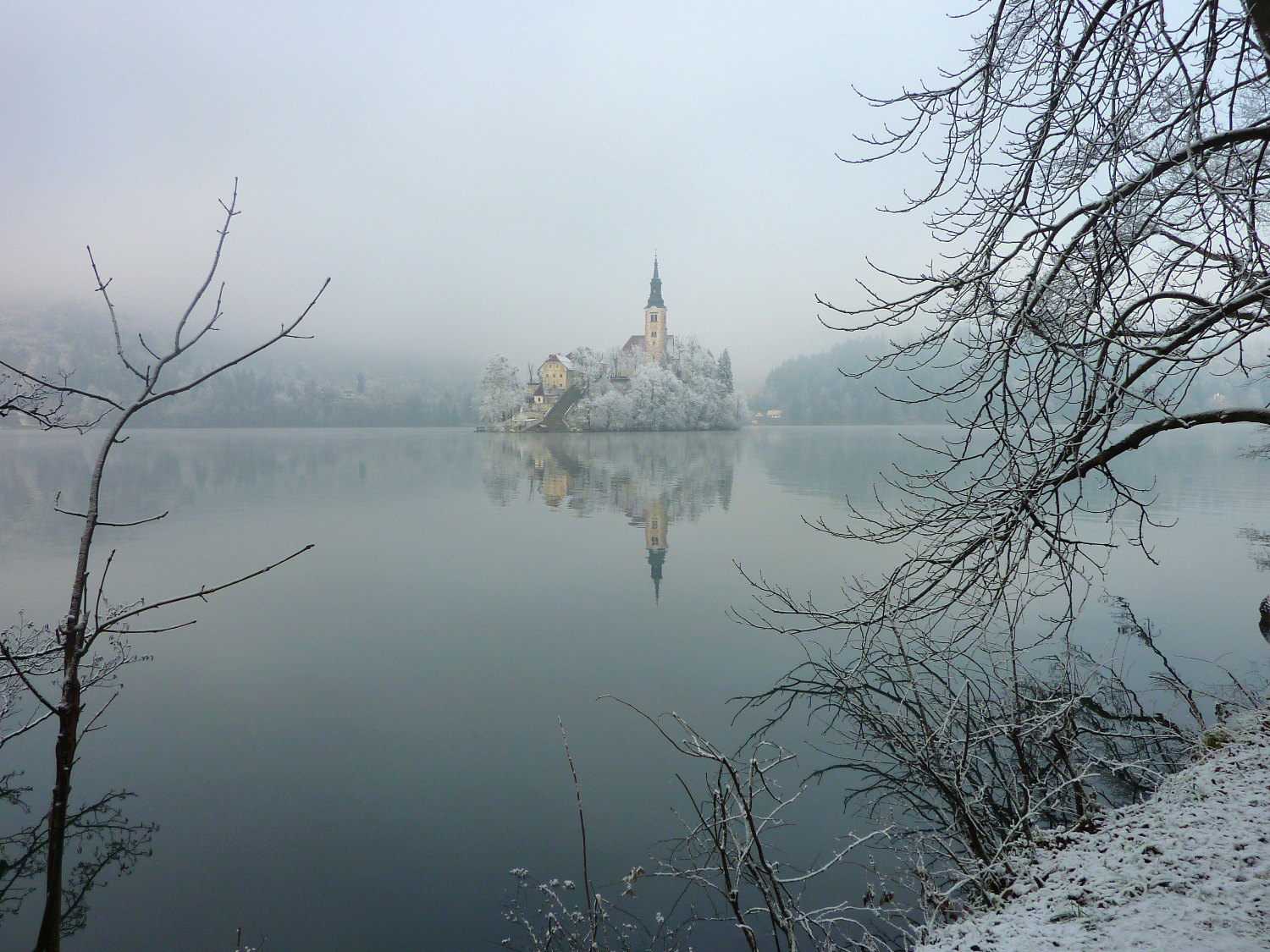 Bled island in winter