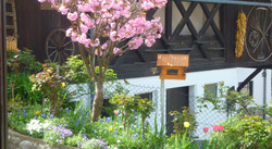 The garden with birdhouse