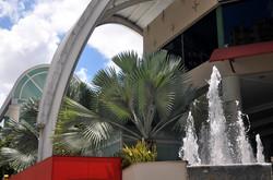 Buena Vista Shopping (7)