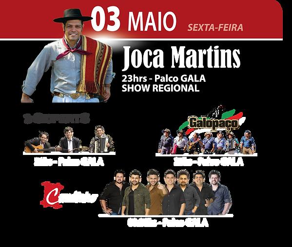 joca-martins-02.png