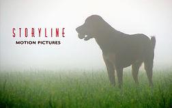Storyline ollie logo 3.jpg