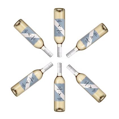 6 Bottles of Poet of Santiago Sauvignon Blanc