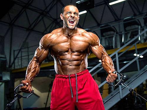 Clínica Prática de Musculação Alto Nível (Sorocaba)