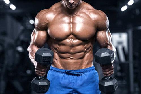 Clínica Prática de Musculação Alto Nível (Lençóis Pta)