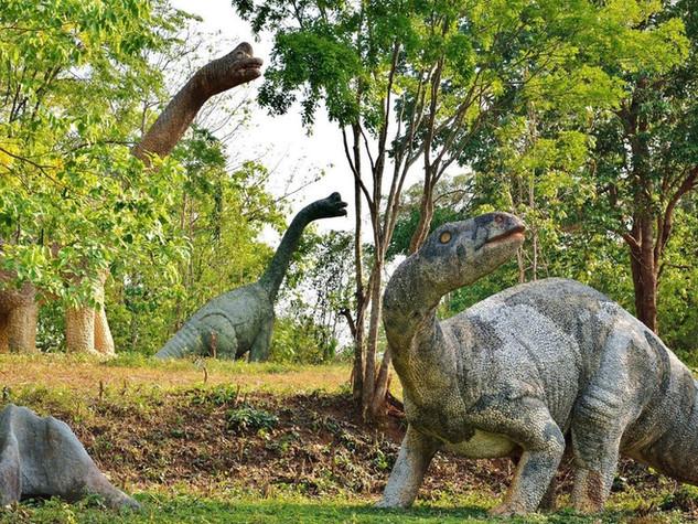 7ลานไดโนเสาร์ (1).jpg