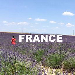 lavender champ France