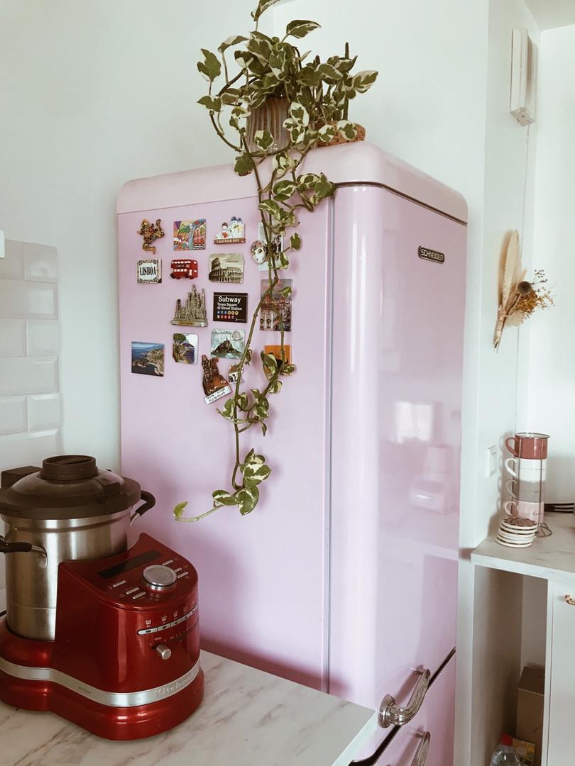 pink frigo.jpg