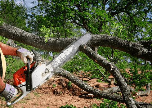 Tree-Removal-Scenic-Acres-768x545.png