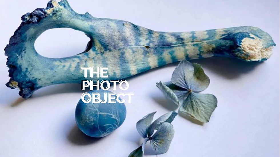 THE PHOTO-OBJECT.png