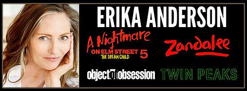 Erika-Anderson-banner.jpg