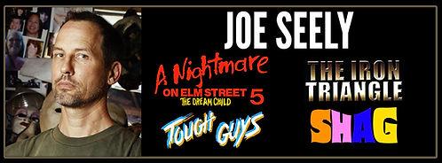 Joe-Seely-banner.jpg