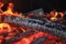 Blaze modern wood heaters