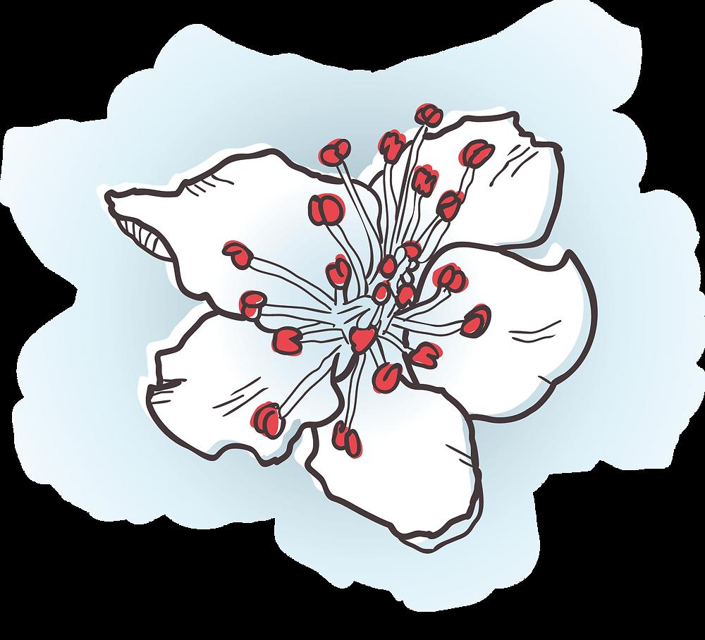 Bloem uit logo Bloesem Uitvaart