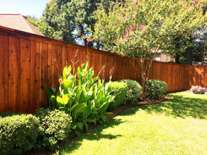 Fence Painting & Staining Services-Exterior Painting