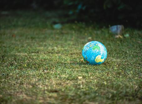 ¿Qué entendemos por ecología integral?