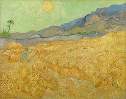8073-Van gogh wheat field matthew 13.jpg