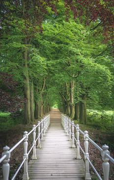 Bridge To ...