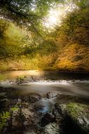 Autumn_Ourthe_Walonie_Belgium.jpg
