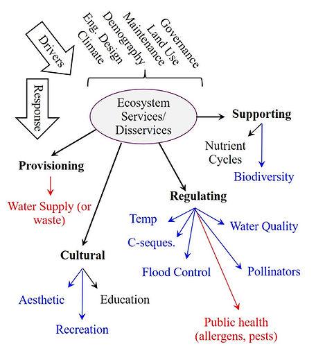 EcosystemServicesDiagram.jpg