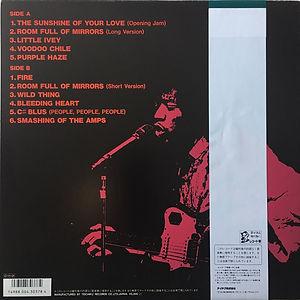 jimi hendrix vinyls reissue /  jimi hendrix  the last experience