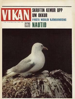 jimi hendrix magazines 1968 /  vikan may 16, 1968